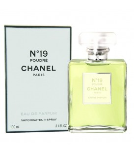 Chanel No 19 Poudre (шанель номер 19 пудра)
